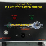 Tesla Chargers 25A12 Battery Charger Rejuvenator